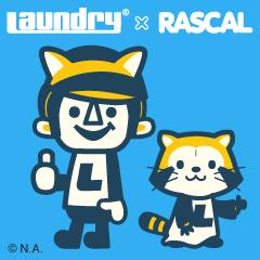 rascal240240