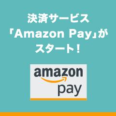 AmazonPay_240